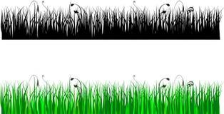 Silhouette d'herbe en couleurs et le noir Photos stock
