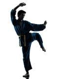 Silhouette d'homme d'arts martiaux de vietvodao de karaté images libres de droits