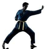 Silhouette d'homme d'arts martiaux de vietvodao de karaté Image stock