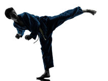 Silhouette d'homme d'arts martiaux de vietvodao de karaté Images stock