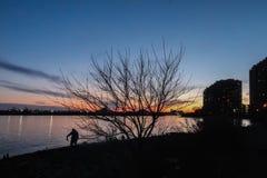 Silhouette d'homme de pêche photographie stock libre de droits