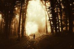 Silhouette d'homme en bois foncés image stock