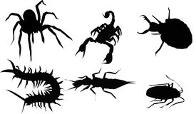 Silhouette d'insecte photographie stock