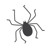 Silhouette d'insecte de coutil Photos stock