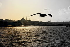 Silhouette d'Istanbul Photographie stock