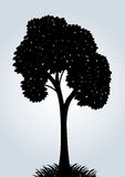 Silhouette d'un arbre de vecteur Image stock