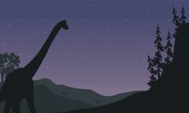 Silhouette d'un Brachiosaurus la nuit Photographie stock