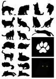 Silhouette d'un chat Photographie stock