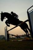 Silhouette d'un cheval photographie stock libre de droits