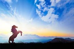 Silhouette d'un cheval sur le fond de coucher du soleil Photos stock