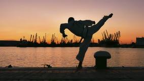 Silhouette d'un combattant du Taekwondo sur un coucher du soleil au-dessus de mer image stock
