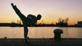 Silhouette d'un combattant du Taekwondo sur un coucher du soleil au-dessus de mer images stock