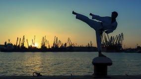 Silhouette d'un combattant du Taekwondo sur un coucher du soleil au-dessus de mer photographie stock libre de droits