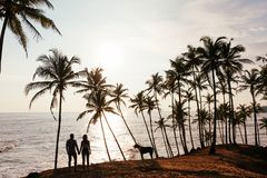 Silhouette d'un couple dans l'amour sur la plage photos stock