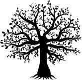 Silhouette d'un décor d'arbre avec des feuilles images stock