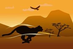 Silhouette d'un guépard fonctionnant à travers la savane Photo libre de droits