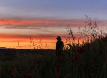 Silhouette d'un homme se tenant dans un domaine de pavot à l'aube photo libre de droits