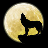 Silhouette d'un loup devant la lune Photo stock