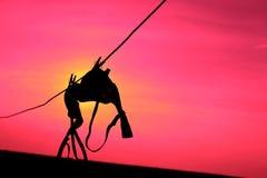 Silhouette d'un soutien-gorge Image stock