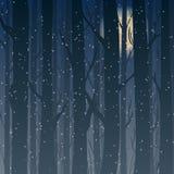 Silhouette d'une forêt d'hiver la nuit, arbres de clair de lune à l'arrière-plan Photos stock