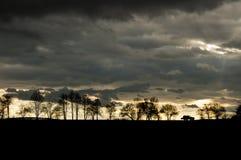 Silhouette d'une voiture et des arbres sur l'horizon Image stock