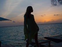 Silhouette dans le paradis images stock