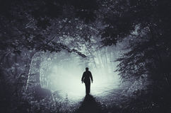 Silhouette in dark forest at night Stock Photos