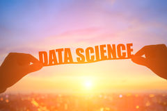Silhouette data science word Royalty Free Stock Photos