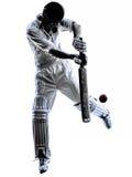Silhouette de batteur de joueur de cricket Images stock