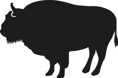 Silhouette de bison illustration stock
