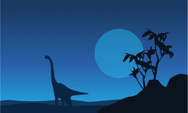 Silhouette de brachiosaurus au paysage de nuit Photos libres de droits