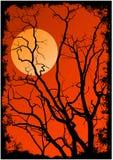 Silhouette de branchements d'arbre illustration de vecteur