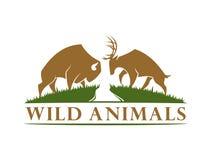 Silhouette de Buffalo et de cerfs communs dans le pré illustration de vecteur