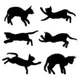 Silhouette de chat d'isolement sur le fond blanc avec le chemin de coupure image stock