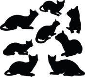 Silhouette de chat dans la pose se reposante d'isolement sur le fond blanc Photographie stock libre de droits