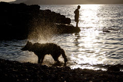 Silhouette de chien Photo libre de droits
