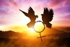 Silhouette de colombe tenant la branche dans le vol de forme de symbole de Vénus sur le ciel de coucher du soleil Photos stock