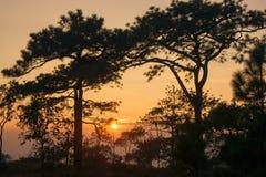 Silhouette de coucher du soleil, Thaïlande Photos stock
