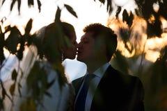 Silhouette de couples de mariage Image stock