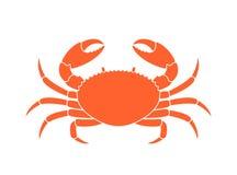 Silhouette de crabe Crabe d'isolement sur le fond blanc Photos libres de droits
