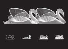 Silhouette de cygne Photographie stock libre de droits