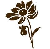 Silhouette de dahlia d'isolement sur le blanc Illustration de vecteur Fleur décorative de jardin Images libres de droits