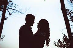 Silhouette de deux amants embrassant dans la forêt Images stock