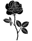 Silhouette de fleur de Rose Images stock