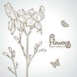 Silhouette de fleurs Photographie stock