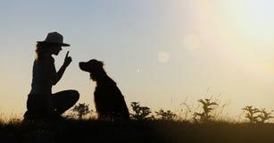 Silhouette de formation de chien Image stock
