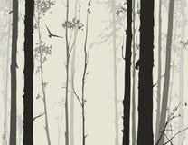 Silhouette de forêt à feuilles caduques avec un hibou 1 de vol Photographie stock