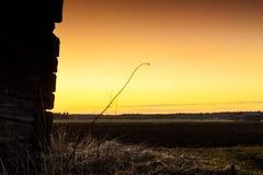 Silhouette de Hay In The Sunset sec Photos libres de droits