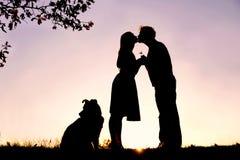 Silhouette de jeunes couples affectueux embrassant sous l'arbre au coucher du soleil Images stock