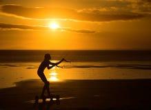 Silhouette de Kiter Images stock